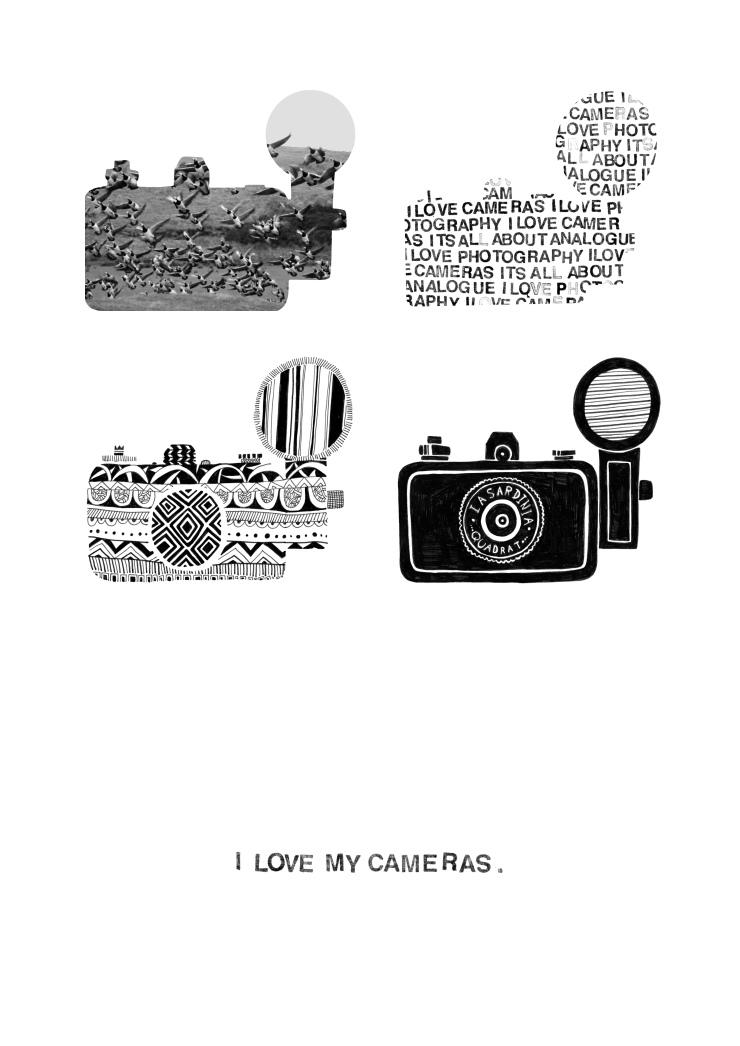 i love my cameras print