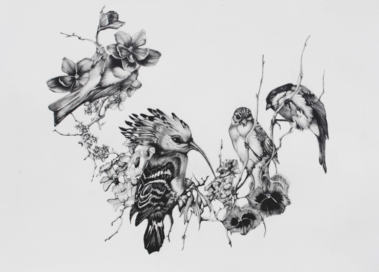Chorus of Birds