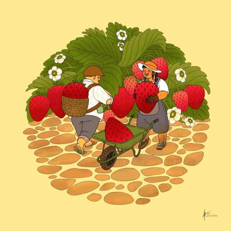 jessicaxyl strawberry farmers