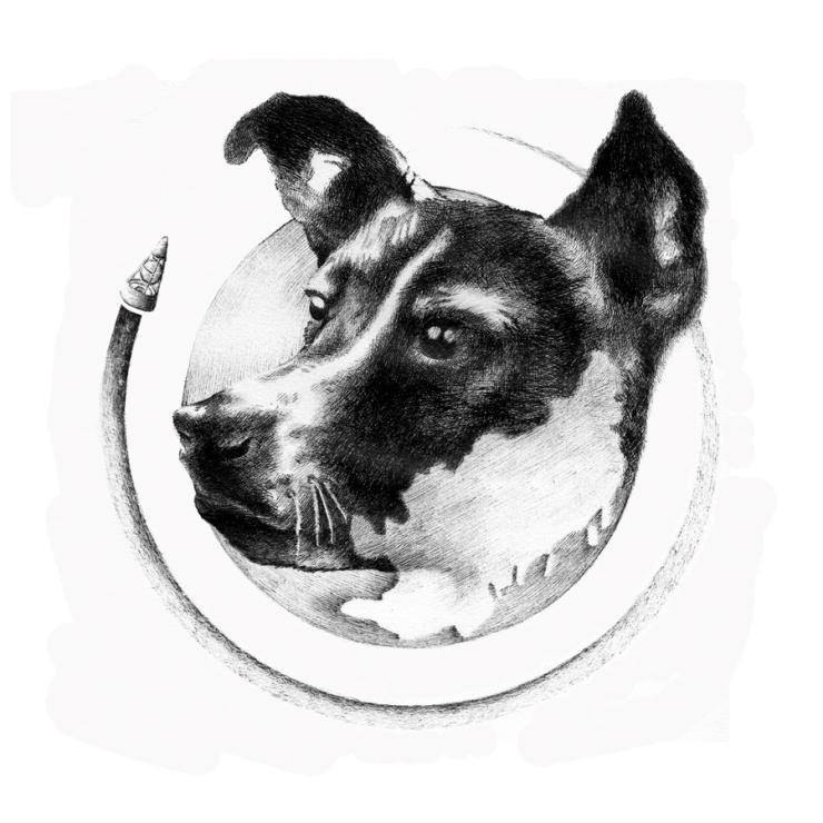 Matt-Burne-Soapbox-Press-Interview-Illustration-Laika