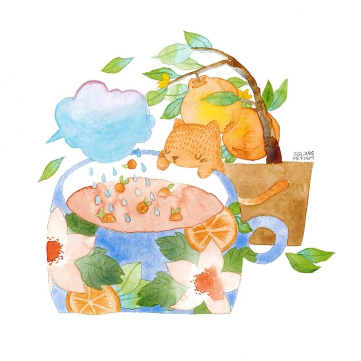 ferne-xie-visualisation-soapbox-press-orange-tea